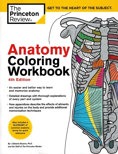 - Princeton Anatomy Coloring Workbook For Imaging Professionals, 4th Edition  - X-Ray Lady