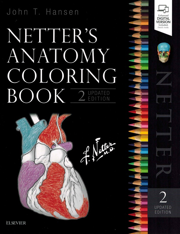 Netters Anatomy Coloring Book In Flash Cards Forearm Click To Enlarge